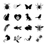 Vector set flat web icons animals and insects. Black  white  for internet, mobile apps, interface design, pet store site Stock Images
