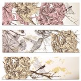 Vector set of floral backgrounds with birds and flowers. Vector set of floral hand drawn brochures with hummingbirds for business cards design Stock Illustration