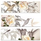 Vector set of floral backgrounds with humming birds. Vector set of floral hand drawn brochures with hummingbirds for business cards design Stock Illustration