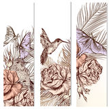 Vector set of floral hand drawn brochures with hummingbirds for Royalty Free Stock Photo