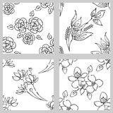Vector set of floral illustration. Black and white seamless patterns with bouquet with flowers, leaves, decorative elements. Hand Stock Photo
