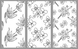 Vector set of floral illustration. Black and white seamless patterns with bouquet with flowers, leaves, decorative elements. Hand Stock Photos