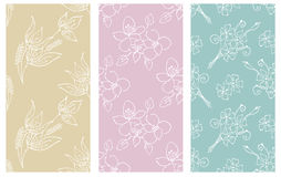 Vector set of floral illustration. Pastel seamless patterns with bouquet with flowers, leaves, decorative elements. Hand drawn con Royalty Free Stock Photography