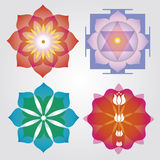 Floral mandalas  set Stock Photos
