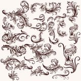 Vector set of floral swirls in vintage style Stock Images
