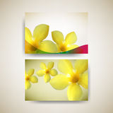 Vector set of flower business card background Stock Images