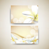 Vector set of flower elements background Stock Photos