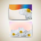 Vector set of flower elements background Stock Images