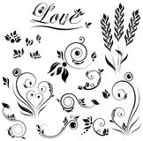 Vector set of flower and leaves and love Royalty Free Stock Photography