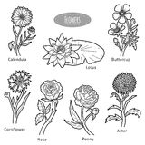 Vector set of flowers, black and white collection Stock Photo