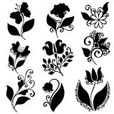 Vector Set of Flowers. Stencils Isolated Royalty Free Stock Image