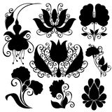 Vector Set of Flowers. Stencils Isolated Royalty Free Stock Photography