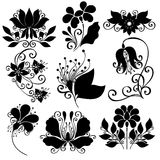 Vector Set of Flowers. Stencils Isolated Royalty Free Stock Photo