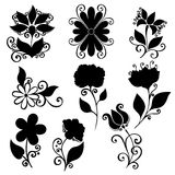 Vector Set of Flowers. Stencils Isolated Stock Image