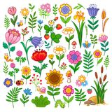 Vector set with flowers. stock illustration