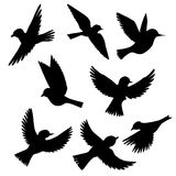 Vector set of flying birds silhouettes. Hand drawn songbirds, isolated vector elements Royalty Free Stock Photos
