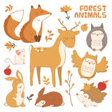 Vector set with forest animals. Stock Image