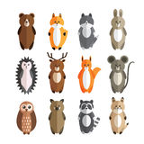 Vector set of forest animals Stock Image