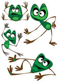 Vector set of four cartoon frogs isolated on white Royalty Free Stock Photography