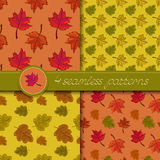 Vector set of four seamless patterns with colored autumn leave Stock Photos