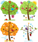 Vector Set of Four Seasons Trees with Birds vector illustration