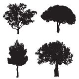 Vector set with four silhouette trees Royalty Free Stock Images