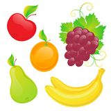 Vector set of fresh fruit Stock Image