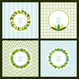 Vector set of fresh green leaves frame and seamless pattern. Nat Royalty Free Stock Photos