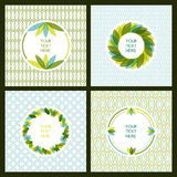 Vector set of fresh green leaves frame and seamless pattern. Nat Royalty Free Stock Photo