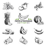 Vector set of fruit and vegetables. Healthy food. Vector illustration in sketch style. Hand drawn design elements royalty free illustration