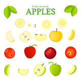 Vector set of fruits. Apple fruit, whole, peeled, piece  half, slice, leaves, seed. Royalty Free Stock Photography