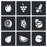 Vector Set of Fruits Icons. Apple, Grape, Banana, Orange, Dragon fruit, Coconut, Pear, Melon, Apricot. Royalty Free Stock Images