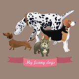 Vector set of funny cartoon dogs Stock Photography