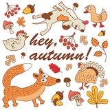 Vector Set of Cute Woodland and Forest Animals.  Royalty Free Stock Photo