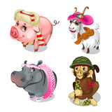 Vector set of funny little animals in clothes. Cute set of funny little animals in clothes - pig, goat, hippo and monkey with a grenade. Circus performer Stock Photography