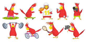 Vector set of funny parrots sport illustrations. Stock Image