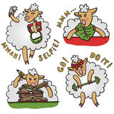 Vector set of funny sheep with different emotions. Cartoon characters. Stock Photos