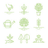 Vector set of gardening icons and linear illustrations Stock Photo