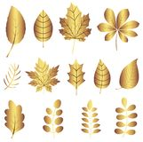 Vector set with gold leaves silhouettes stock illustration