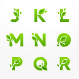 Vector set of green eco letters logo with leaves. Ecological fon Stock Photos