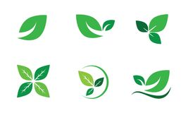 Vector Set Green Leaf,ecology,Leaves, Nature. Leaf eco green icon isolated illustration grass nature emblem sign ecology summer environment symbol spa leaves Royalty Free Stock Images