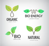 Vector set of green leaves, eco bio logos, natural Royalty Free Stock Image