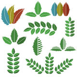 Vector Set of Green Leaves Stock Photo