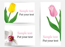Vector set of greeting cards with flowers Stock Image