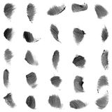 Vector set of grunge brushes Stock Photos
