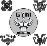 Vector set: gym Royalty Free Stock Photos