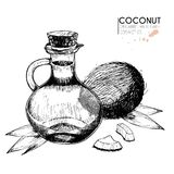 Vector set of hair care ingredients. Organic hand drawn elements. Coconut, leaves,bottle oil. Royalty Free Stock Photography