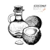 Vector set of hair care ingredients. Organic hand drawn elements. Coconuts, slices, bottle oil. Stock Images