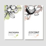 Vector set of hair care ingredients. Organic hand drawn elements. Flyers with macadamia and coconut. Stock Photography