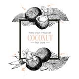 Vector set of hair care ingredients. Organic hand drawn elements. Square border composition. Royalty Free Stock Photography